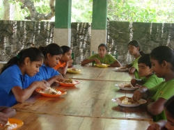 Food and Nutrition Programs